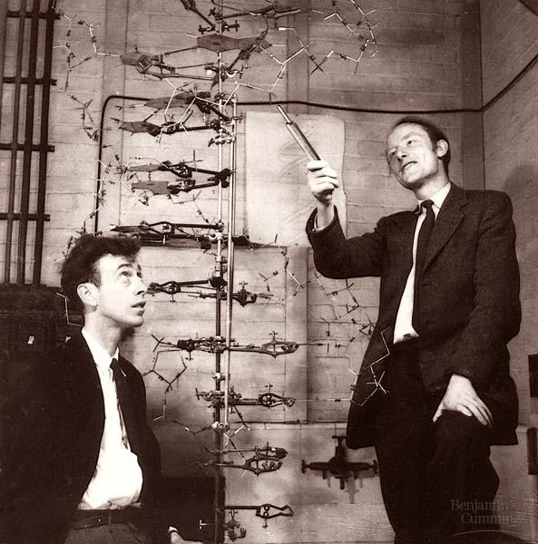 25 de abril de 1953: El anuncio de la estructura del ADN por Watson y Crick