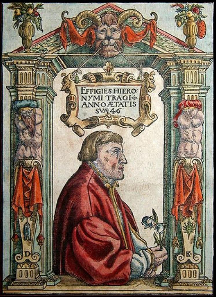 Hieronymus Tragus o Jerome Bock- Pintura de David Kandel (1546)