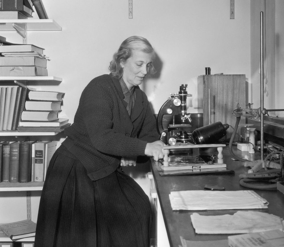Dorothy Mary Crowfoot-Hodgkin