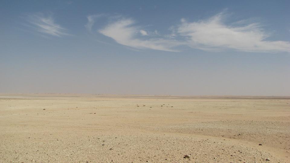 Día Mundial de Lucha contra la Desertificación: Cada minuto se pierden 23 hectáreas de tierra