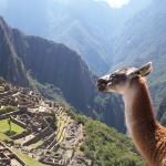 Machu Picchu, la primera referencia de su descubrimiento el 14 de julio de 1902