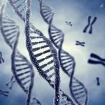 """Los """"superhombres"""" genéticos sí existen: Halladas trece personas con un escudo natural contra enfermedades genéticas"""