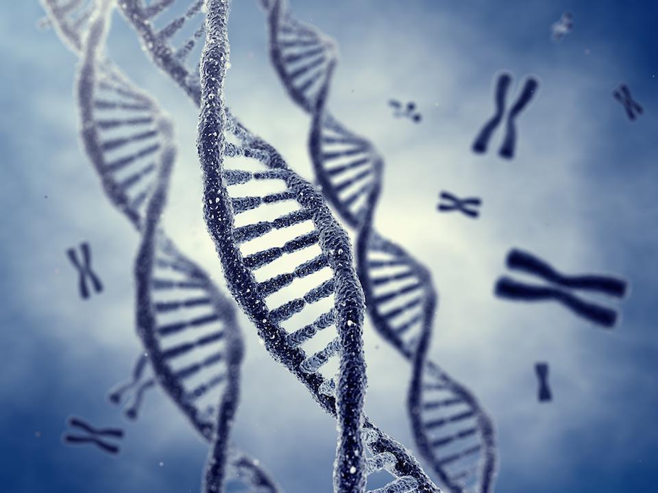 10 de septiembre de 1984, Alec Jeffreys descubre accidentalmente la huella genética