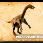 Dinosaurios, patas delanteras