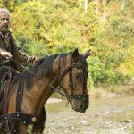 Los caballos regresan a América después de extinguirse 11,000 años atrás: 8 de diciembre de 1493