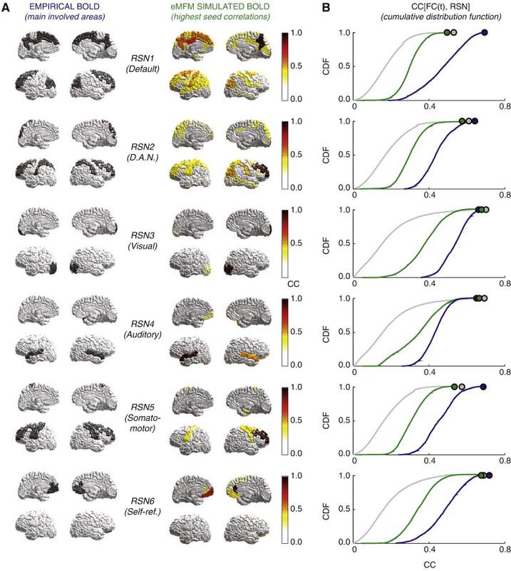 La conectividad funcional dinámica, nuevo biomarcador de enfermedades mentales