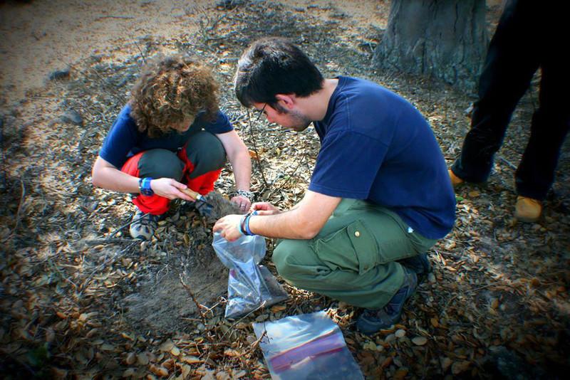 Toma de muestras de suelo en el Parque Doñana después de un incendio- US