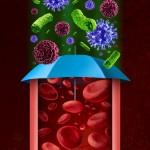 """Las vesículas extracelulares de """"basura"""" del organismo a paradigma científico"""