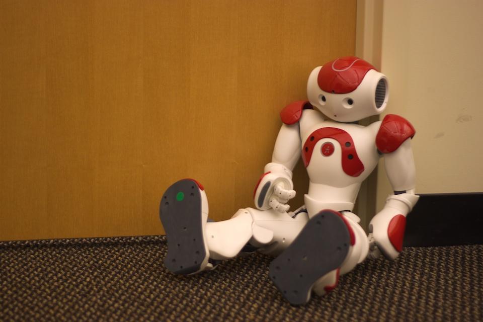 Robot Nao- Jiuguang Wang