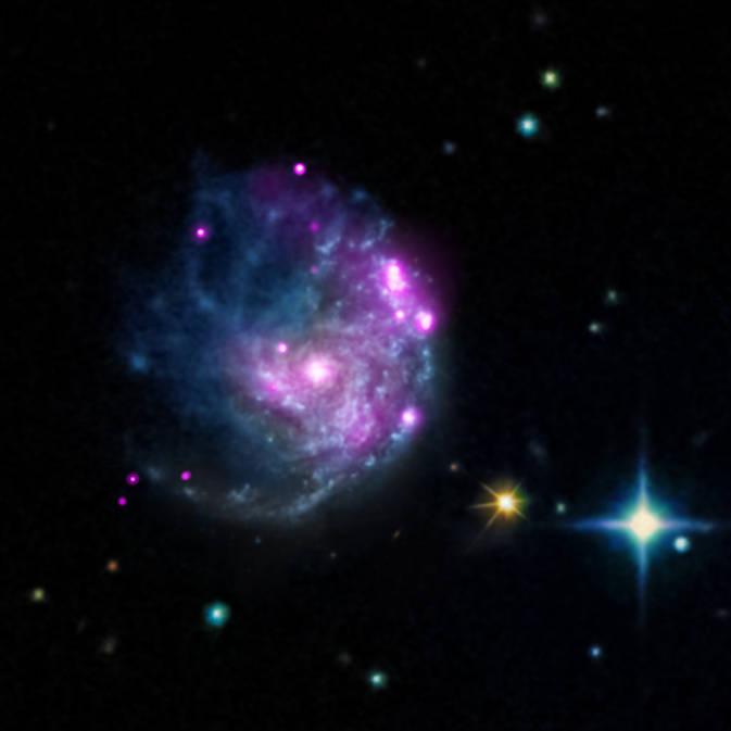 El Observatorio Chandra descubre un intrigante miembro del árbol genealógico de los agujeros negros