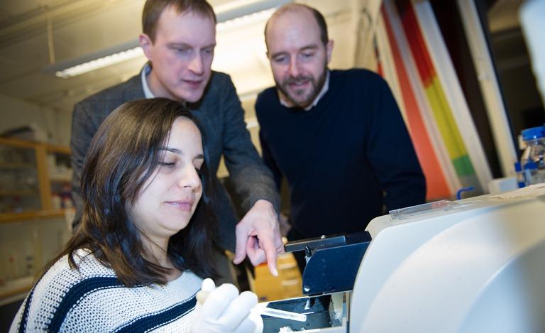 Se desvelan nuevos tipos celulares en el cerebro en base a su información genética
