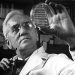 Alexander Fleming: La penicilina en un principio no fue muy bien recibida