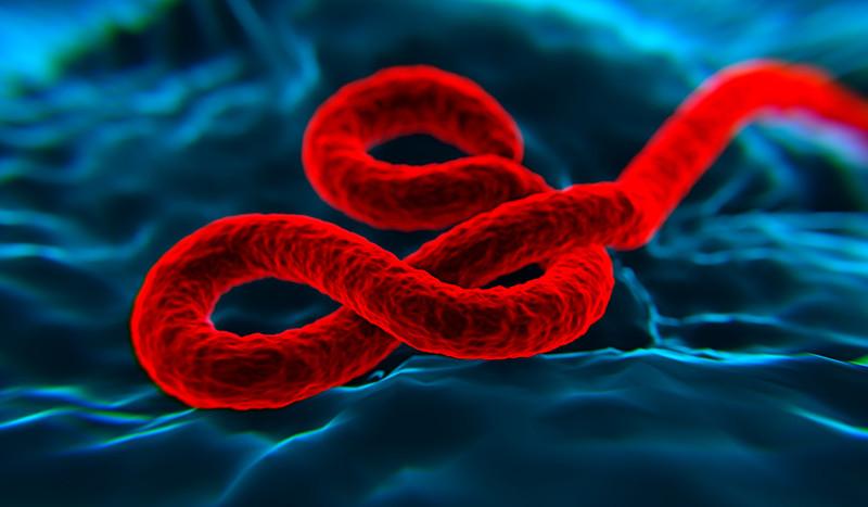 Comienza la tercera fase de los ensayos clínicos para la vacuna contra el ébola