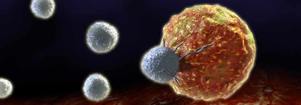 Celula cancerigena