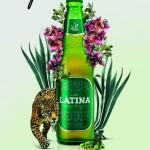 Mexicanos elaboran cerveza artesanal de agave azul baja en calorías