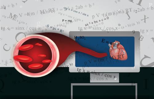 Ecuaciones matemáticas que sirven para estudiar enfermedades cardiacas