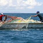 Requieren los océanos para su conservación un adecuado manejo de sus recursos