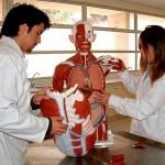 """""""Ataca"""" ejército de futuros médicos diabetes en alumnado de universidad"""