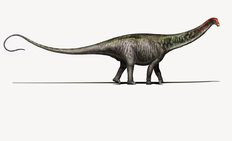 El brontosaurio vuelve a ser un género único