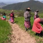 Campesinas sufren de manera desproporcionada la pobreza: 15 de octubre, Día Internacional de las Mujeres Rurales