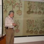 La medicina prehispánica, un sistema de salud rico en conocimientos
