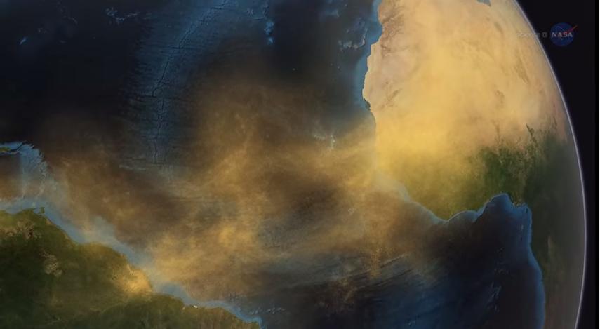 El polvo del desierto alimenta los bosques amazónicos