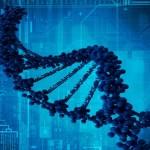 La expresión de los genes es clave para comprender las diferencias entre individuos y la predisposición a enfermedades