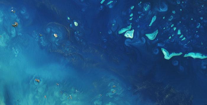 La Gran Barrera de Coral, de Australia, vista desde el espacio por el satélite Landsat 8- USGS/ESA