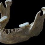 Hallan el humano moderno con los parientes neandertales más próximos