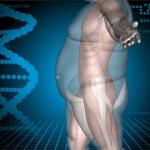 Variantes genéticas asociadas a la obesidad infantil mexicana