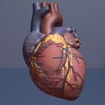 Los afroamericanos y los hispanos afrontan un mayor riesgo de sufrir insuficiencia cardíaca, en EE.UU.