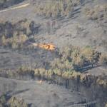 Los efectos de los retardantes de llama persisten diez años tras los incendios