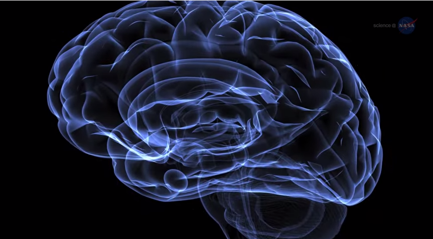 Se estudiará la enfermedad de Alzheimer en la ingravidez del espacio (VIDEO)
