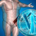 El equilibrio de los microorganismos presentes en el intestino humano, la diferencia entre salud y enfermedad