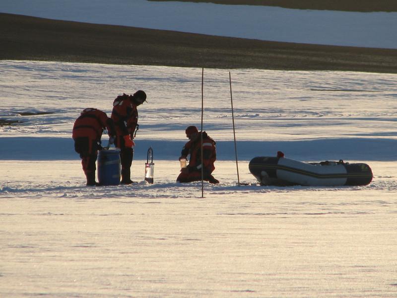 La primer comunidad de virus descubierta en la Antártida