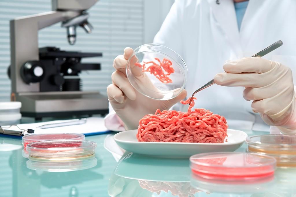Mexicana en Canadá innova con método que detecta patógenos en alimentos en menos de 24 horas