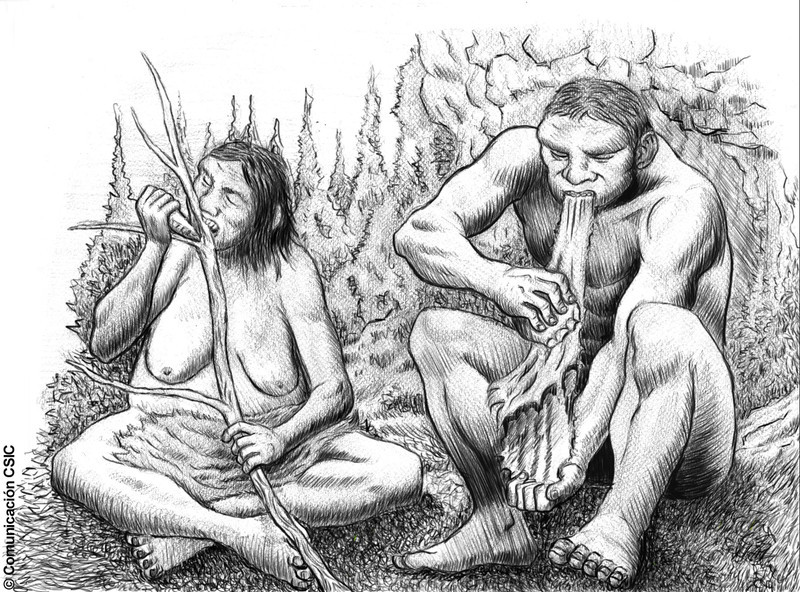 La endogamia predominaba entre los neandertales de El Sidrón