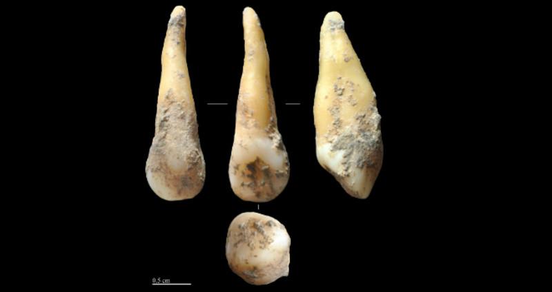 Los primeros agricultores de la Península Ibérica tenían la piel clara y los ojos oscuros