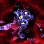 Primer modelo sobre la formación de las galaxias más brillantes