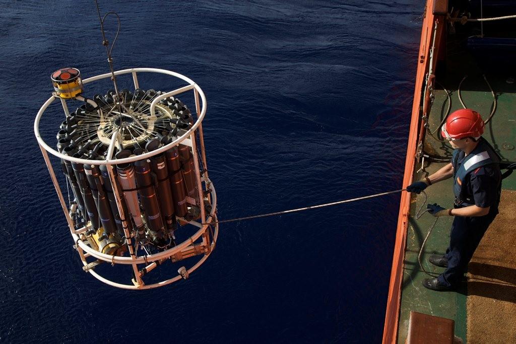 La mayor parte del nitrógeno que necesita el plancton para crecer procede de aguas profundas