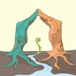 Declaración Veracruz por la sustentabilidad