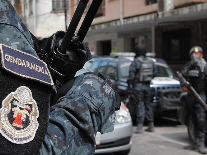 División de Gendarmería, Policía Federal, México