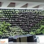 Jardines verticales, para crear espacios verdes en ciudades