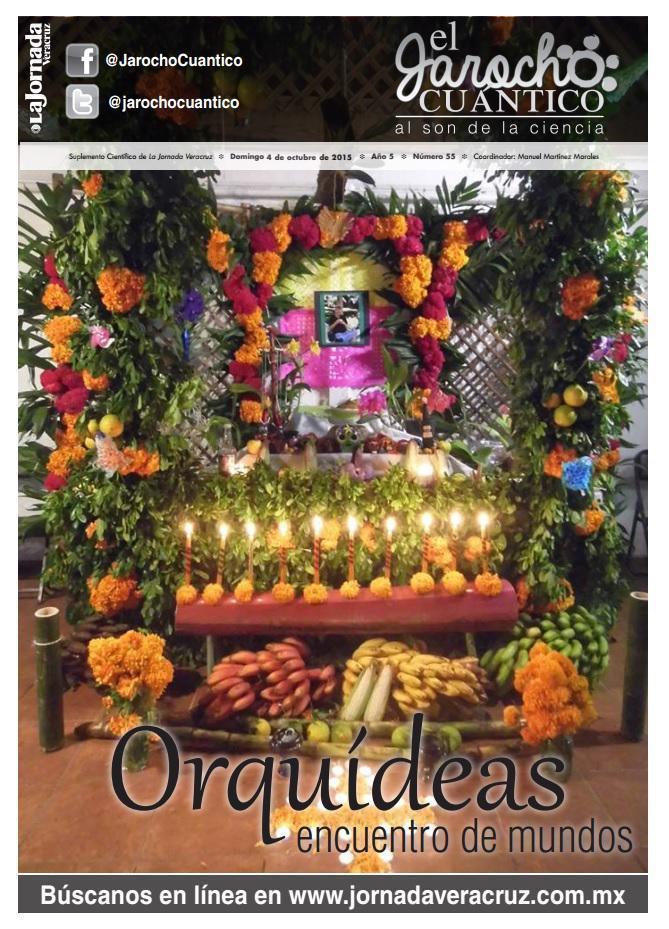 Jarocho Cuántico 55, Orquídeas, encuentro de mundos