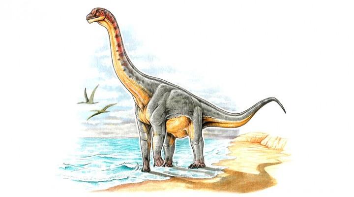 Padillasaurus leivaensis, el primer dinosaurio colombiano- Gabriel Lio