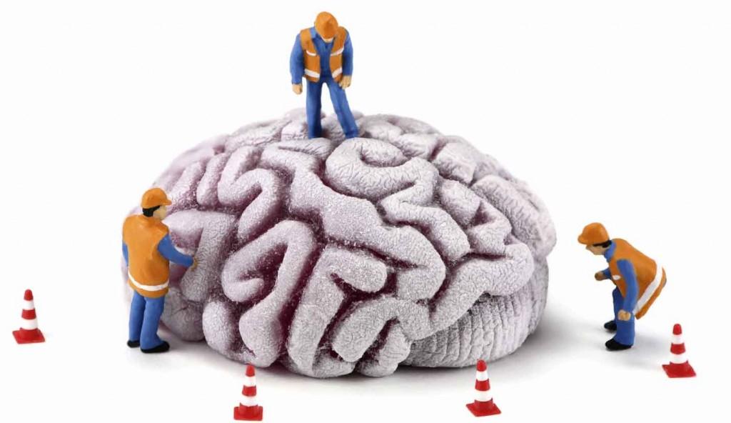 Cerebro en reparación