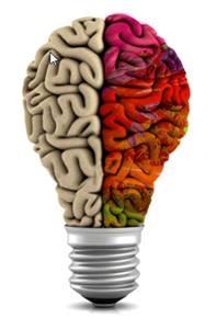 Cerebro prendido, foco, multicolor