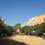 Los espacios verdes residenciales disminuyen el riesgo de mortalidad cardiovascular
