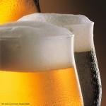 Residuos de cerveza convertidos en pigmentos nutritivos que previenen enfermedades: Una mexicana en Alemania