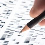 Código de barras de la vida, para clasificar las especies